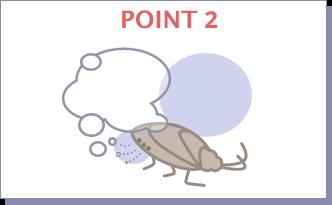 POINT2 気門から薬剤の 微粒子が入る