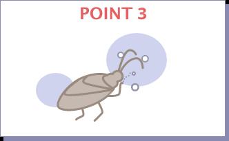 POINT3 グルーミングの際に 口から体内に入る